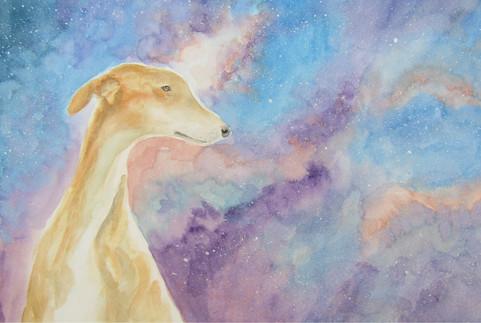 The Running Dog Nebula