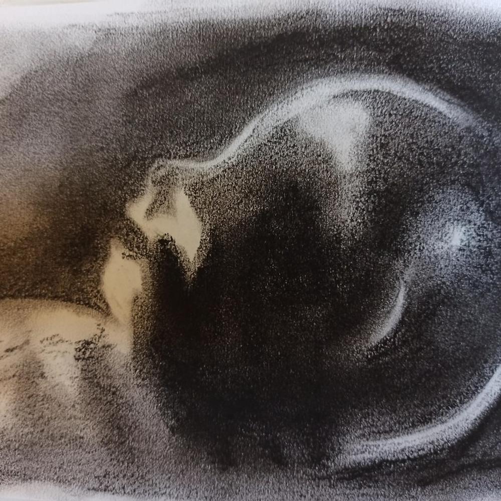 Baby Scan Ultrasound Portrait