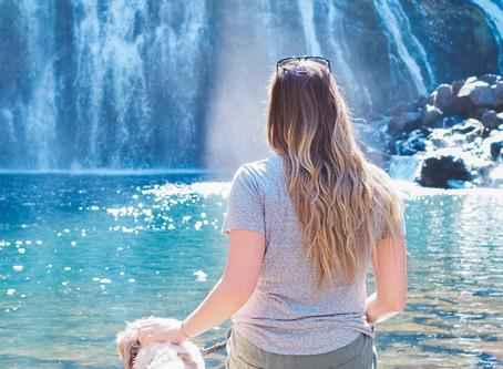 Hiking McCloud Falls Trail Near Mount Shasta