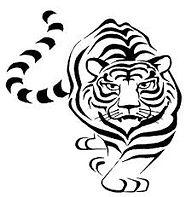 Joliet tiger.jfif