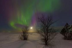 Сияние Белого моря