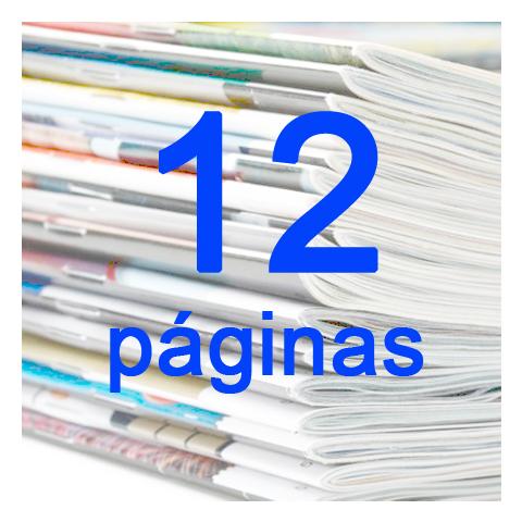 12 PAGINAS