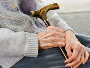 Justiça mantém decisão que desobriga avó de pagar pensão para netos maiores de 24 anos