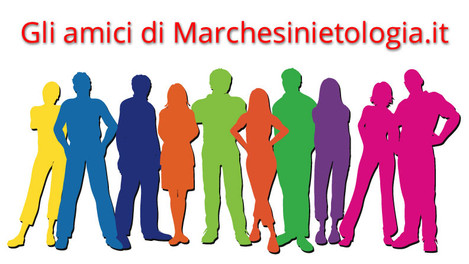 """Articoli """"Marchesinietologia.it"""""""