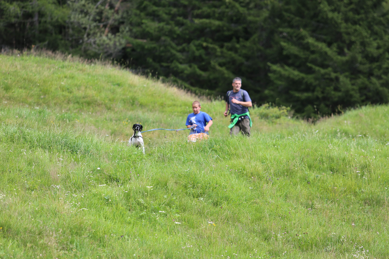 campi orion 2014