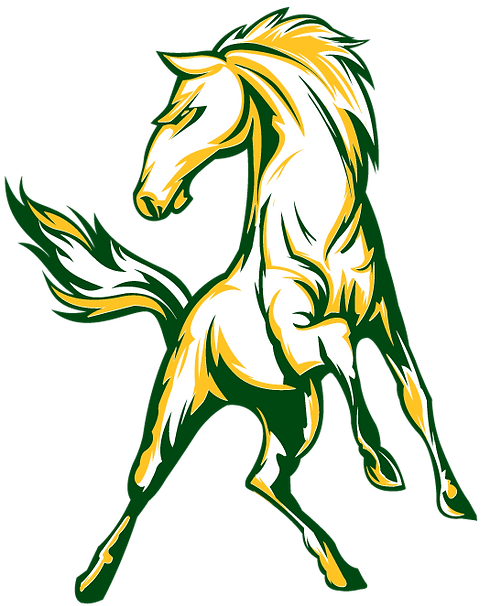 1.Full-Color-Horse-Body.png
