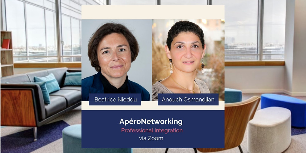 ApéroNetworking - Professional Integration