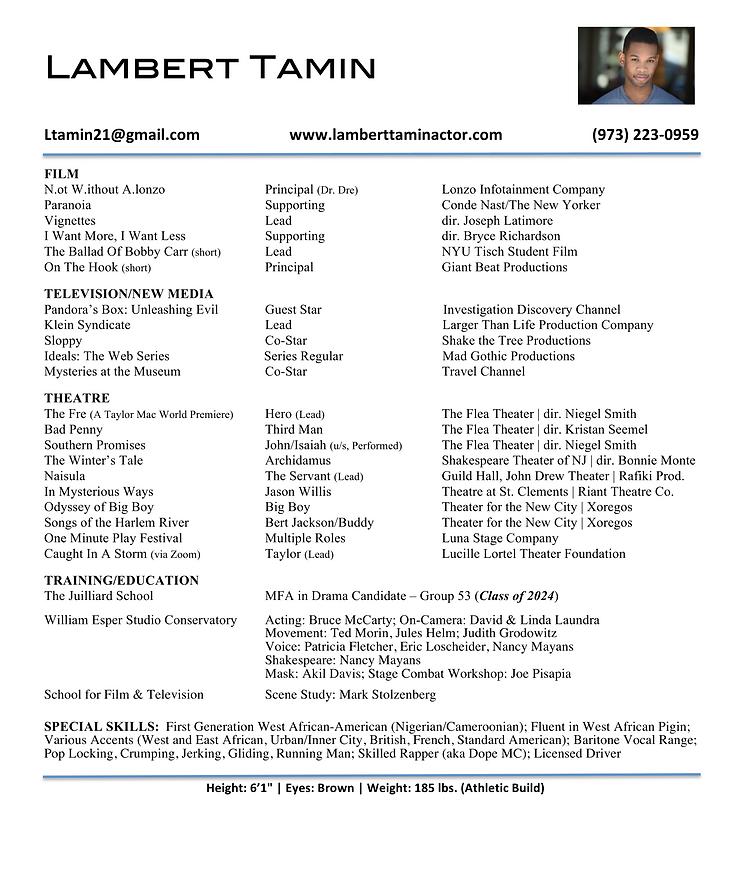 Lambert Tamin Picture Resume 2020 .png
