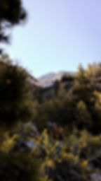 Mount Charleston, Las Vegas Photographer, hiking, Big Falls