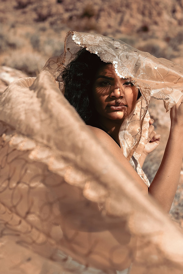 Sunset deseret outdoor creative portrait photoshoot with Indian sari in Red Rock Canyon Las Vegas, NV. Photo by Daniela Blagoeva portrait and fashion photographer based in Las Vegas and worldwide