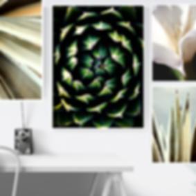Digital Prints Wall Art, Las Vegas Photographer