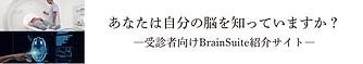 BrainSuite紹介サイトバナー