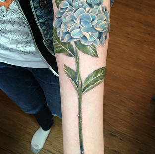 Spring's first blooms are on their way.. here's one of them (freshly done.. sorry for the redness) 💙.jpg