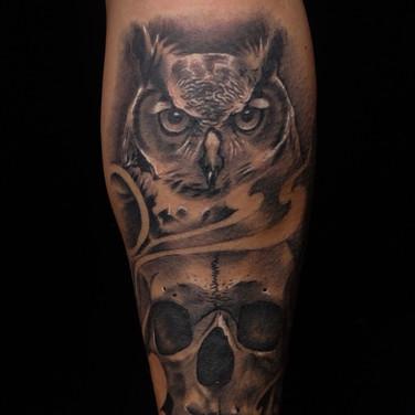 mark owl skull_edited.jpg