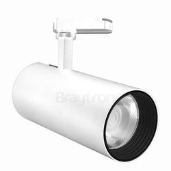 30w Cob Shopline-D Ray Spot Trifaze