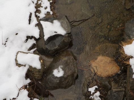 Tahoe 2007 496 - Version 5.jpg