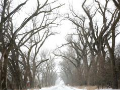 Nebraska 307.jpg