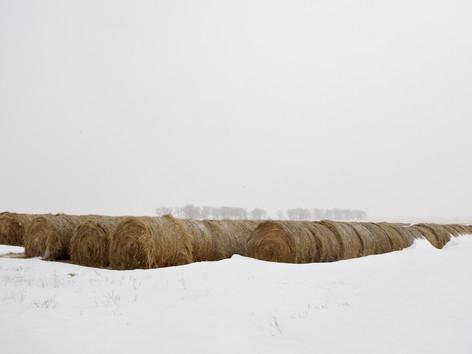 Nebraska 386.jpg
