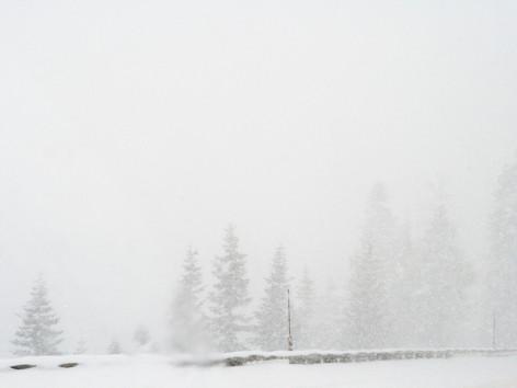 Tahoe 2007 122 (1).jpg