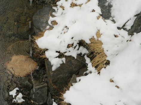 Tahoe 2007 489 - Version 3.jpg