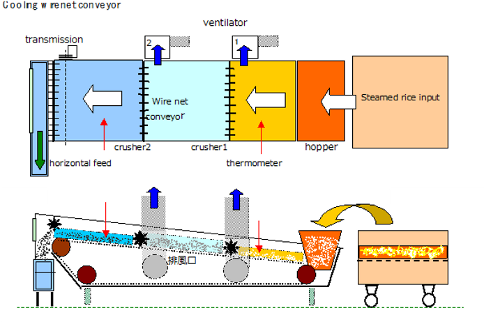 Cooling wire net conveyor.png