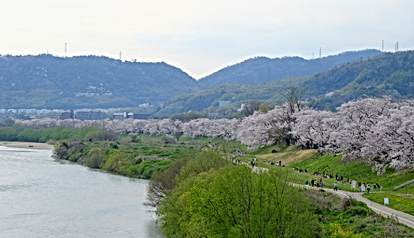 National government Yodo River waterway