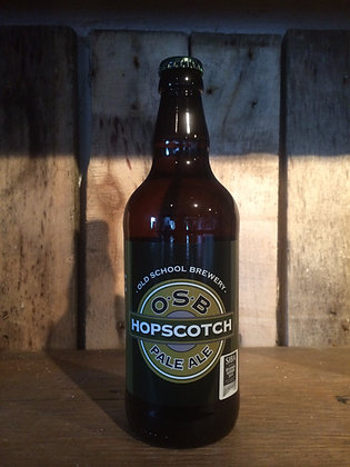 Hopscotch 12 Bottle Case