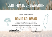 Certificate of OWNERSHIP (Sample).png