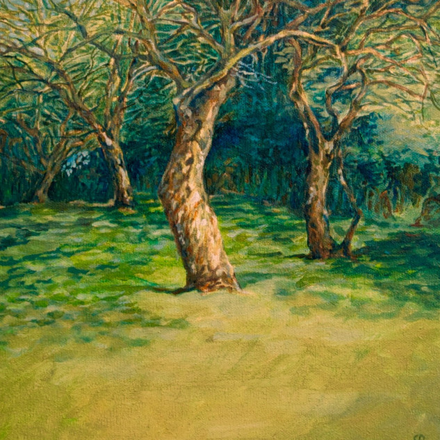 Seaside orchard