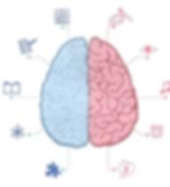 脳認知科学診断画像.PNG