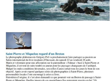 """""""Actualités des iles de Bretagne"""""""