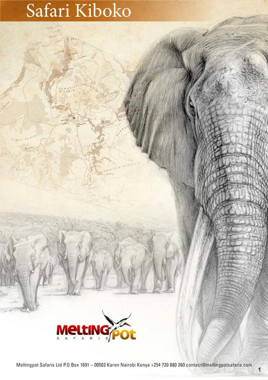 Au Masaï-Mara avec Grégory POL - Décembre 2021