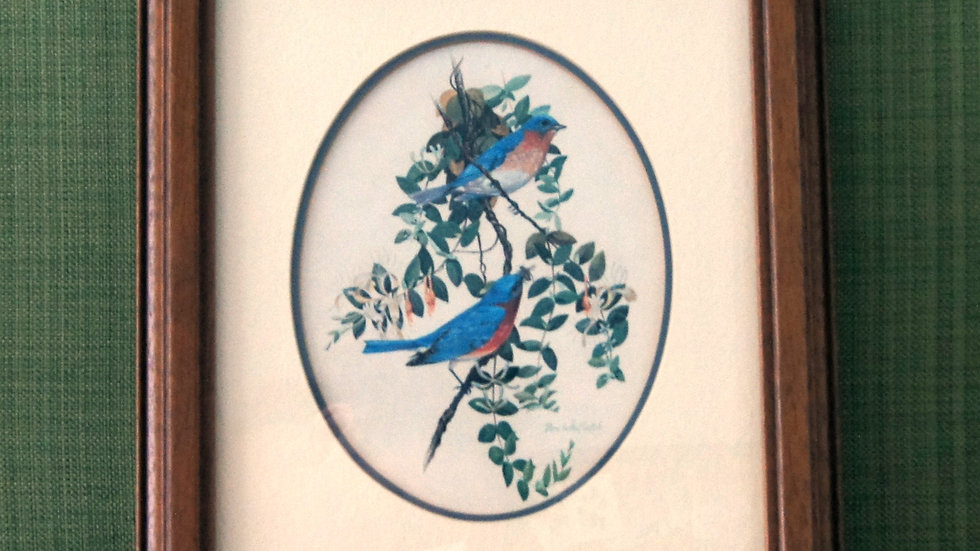 Vintage Don Whitlatch Eastern Bluebirds Framed Print