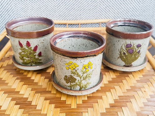 Set of 3 Ceramic Pots with Dish