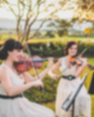 Do violini