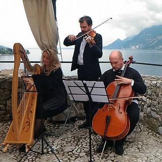 Arpa, Violino e Violoncello