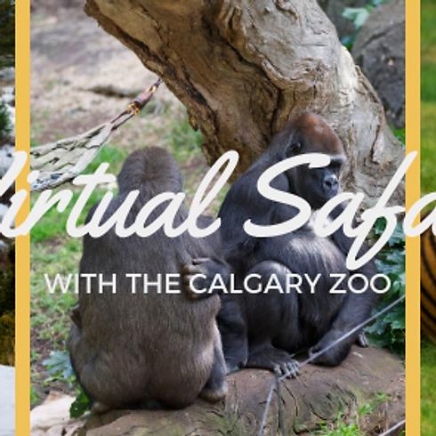 Virtual Safari's With the Calgary Zoo