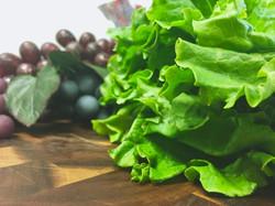 Fresh Leaf Lettuce
