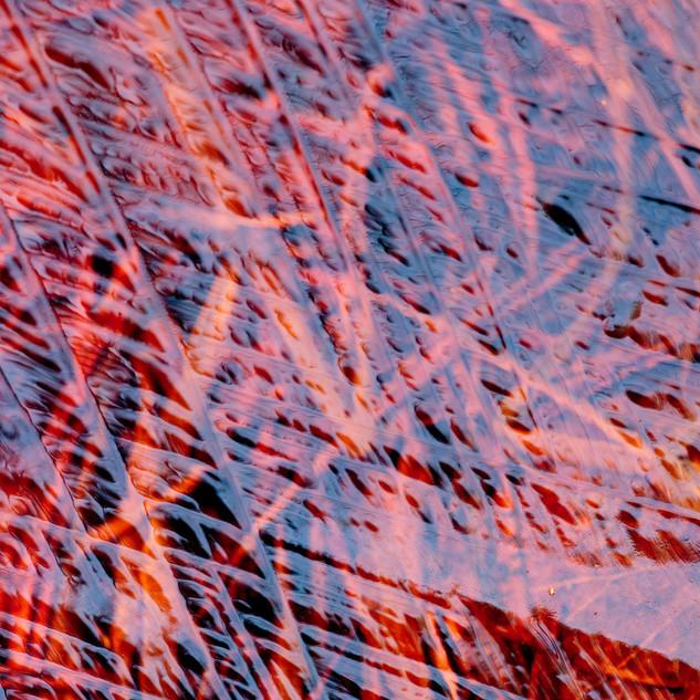 Перья ледяной птицы