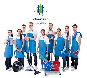 Cleansec 2.JPG
