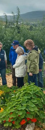 One Day Vegetable Garden Planning  selected dates in January and February see www.ourganic