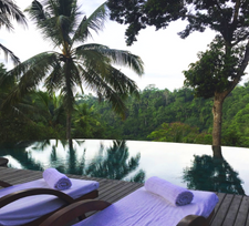 FROM THE TREEHOUSE TO THE CLIFFTOPS: A BALINESE ODESSEY