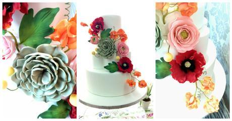 Torta Succulent