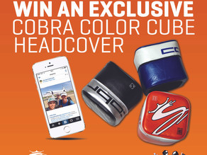 """WIN an exclusive """"COLOUR CUBE"""" Cobra Golf headcover! [CLOSED]"""