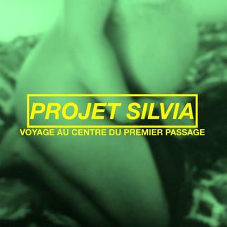 Projet Silvia