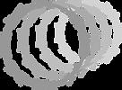 Concertina Espiral