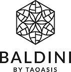 Baldini logo.jpg