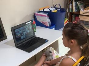 Virtual School Tips and tricks