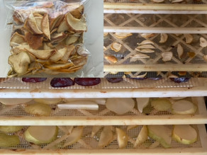 Dehydrating your Fruits and Veggies...