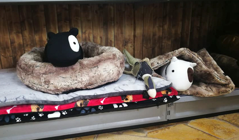 Hundebetten und -decken